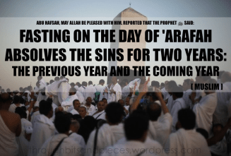 [throughbitsandpieces] fasting on the day of arafat