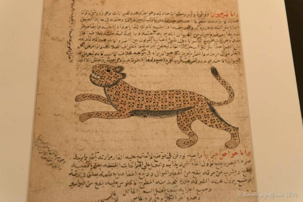 Leopard (Illustration Marvels of Creation) Yemen? 16th or 17th century