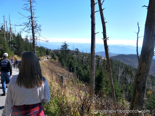Walking Down from Clingman's Dome
