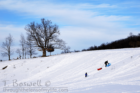Sledding during these last days of winter, 2015.