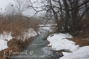 DSC06113-2-winter-stream-snow-melt-fog-3x2cp-terry-boswell-wm