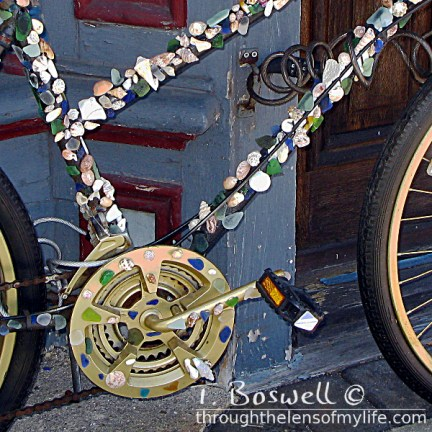 IMG-7152-4-cape-may-shell-bike-1x1cp-terry-boswell-wm