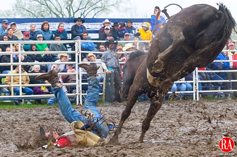 GOSHEN, CT--13 MAY 2006 -051306JS01- A cowboy competeing in the bareback bronc event has a soft squishy landing during the Northeast Stampede at the Goshen Fairgrounds on Saturday. The field for the event was covered in places by more than a foot of mud brought on by the past weeks severe rainstorms.     --. Jonathan Wilcox Republican-American