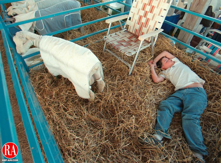 GOSHEN, CT 09/05/98--0905CA01.tif Ray Zagurski 12, from Terryville takes a nap in the Lamb cage after a long day at the Goshen Fair. Ray Zagurski works with the Southdown Pastures in Terryville.--CRAIG AMBROSIO staff photo for REPORTERS NAME / STANDALONE PHOTO (Filed in Scans/Scan-In)