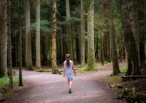 girl walking near crossroad of trees