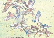 """Cover art for Torsten Jensen's solo piano EP, """"Progressions"""""""