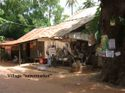 Villagesupermarket_copy_2