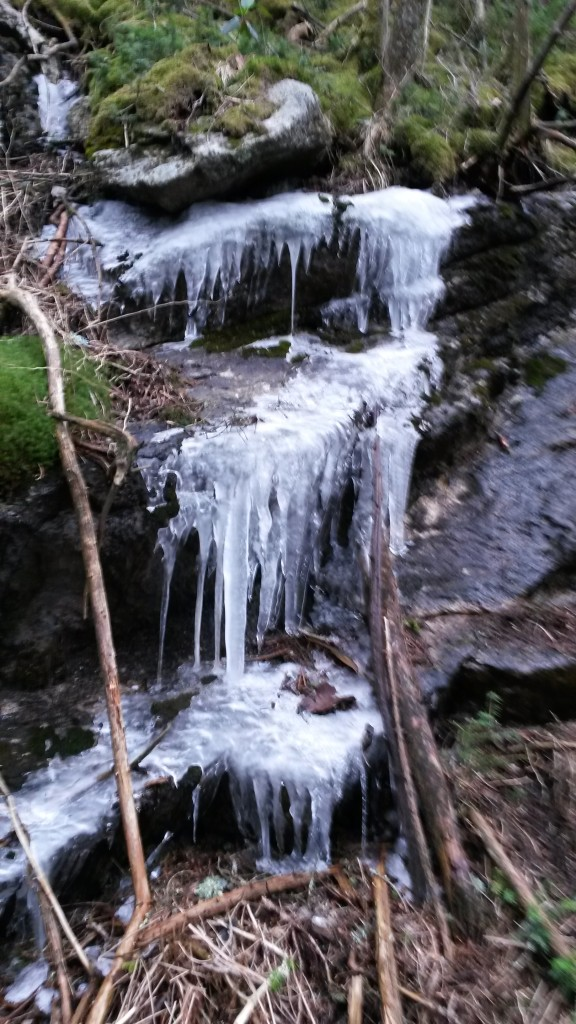 Ice Cascades above 6000 ft.