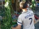 Ronaldo Bamiani – Verkäufer von Maulbeeren.