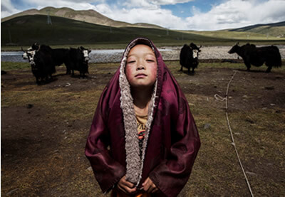 © Kevin Frayer, Canadá, 1er lugar, profesionales, personas, 2016 Sony World Photography Awards