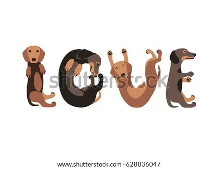 Download Dachshund Stock Images, Royalty-Free Images & Vectors ...