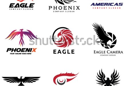 Company Logo With Bird 4k Pictures 4k Pictures Full Hq Wallpaper