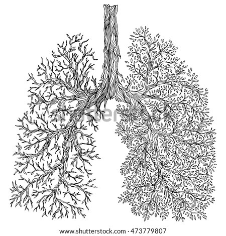 Respiratory Stock Images Royalty Free Images Amp Vectors