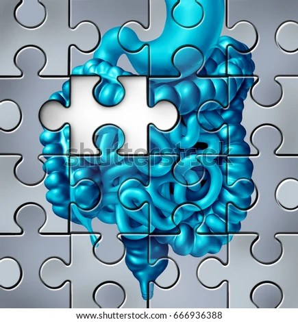Puzzle Stock Images Royalty Free Images Amp Vectors