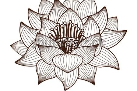 Lotus flower drawing designs path decorations pictures full path lotus flower drawing tattoos pinterest lotus flower lotus and flowers drawing google zoeken download drawing floral design symbol line art flower lotus mightylinksfo