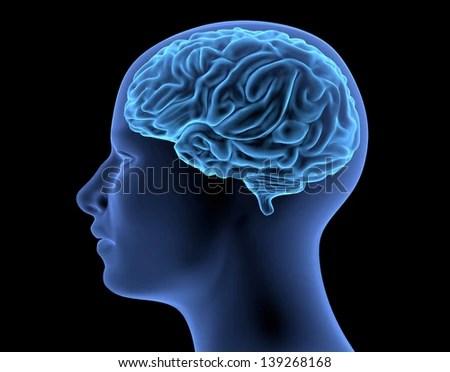 cognitive science inform issues   philosophy  mind  moocs essays