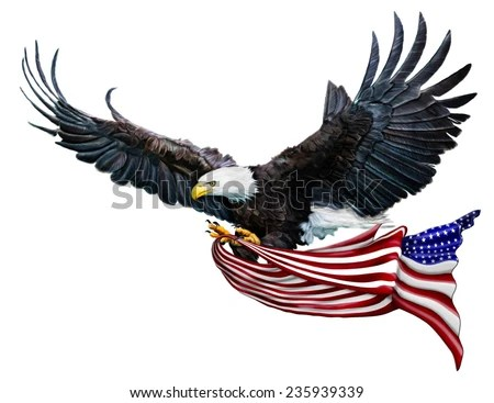 Eagle Stock Images Royalty Free Images Amp Vectors