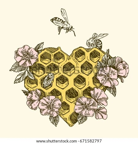 Honeycombs Shape Heart Bees Flowers Vintage Stock Vector