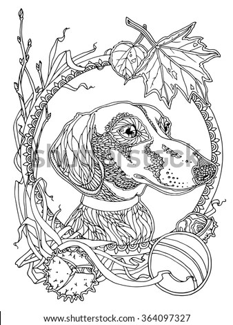 Dachshund Autumn Elements Coloring Page Adults Stock