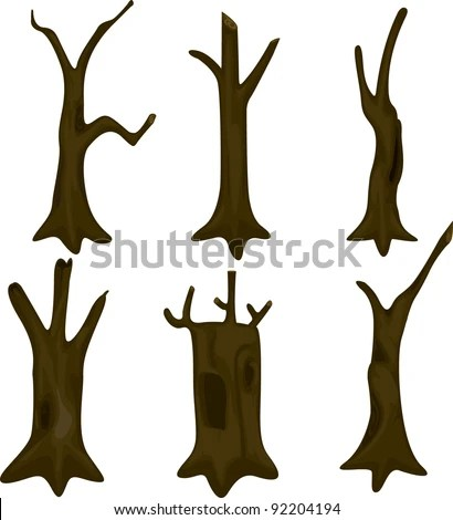 Tree Trunk Stock Images Royalty Free Images Amp Vectors Shutterstock