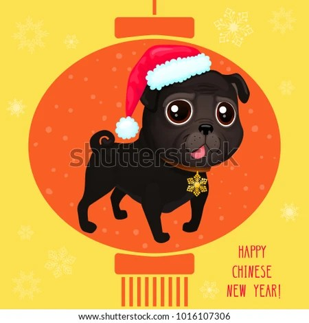 Chinese Pug Stock Images Royalty Free Images Amp Vectors