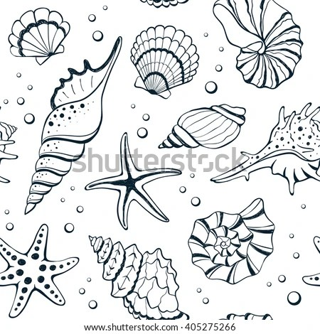 Seashell Pattern Stock Images Royalty Free Images