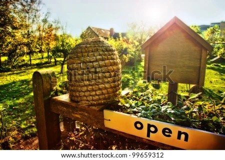 Honey Bee House Stock Images RoyaltyFree Images
