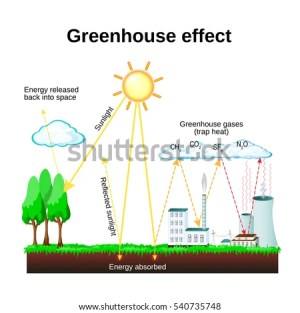 Greenhouse Effect Diagram Showing How Greenhouse Stock Illustration 540735748  Shutterstock