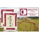 【ふるさと納税】ホクレンゆめぴりか(無洗米10kg)【ANA