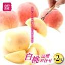 【ふるさと納税】柔らかめ白桃 約2kg F2Y-1466