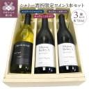 【ふるさと納税】ワイン 山梨 シャトー酒折 限定 赤ワイン