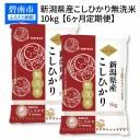 【ふるさと納税】新潟県産コシヒカリ 無洗米 10kg ※定期