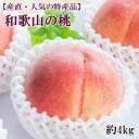 【ふるさと納税】【産直・人気の特産品】和歌山の桃 約4kg・