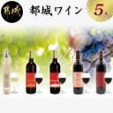 【ふるさと納税】天孫降臨神話・月の神 ワイン5本セット -