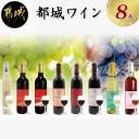 【ふるさと納税】天孫降臨神話・愛の神 ワイン8本セット -