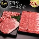 【ふるさと納税】都城産宮崎牛ロースいろいろ3種セット - 牛