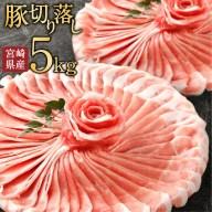 【ふるさと納税】宮崎県産 豚肉 切り落し 5kg 5000g