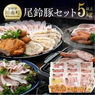 【ふるさと納税】人気の「ななつ星in九州」採用!!5キロオー