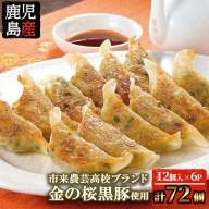 【ふるさと納税】鹿児島県産!金の桜黒豚餃子(16g×12個)