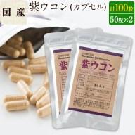 【ふるさと納税】鹿児島県産!紫ウコン(カプセル50粒×2袋)