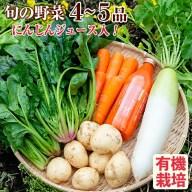 【ふるさと納税】鹿児島県湧水町産有機野菜セット!無添加ニンジ