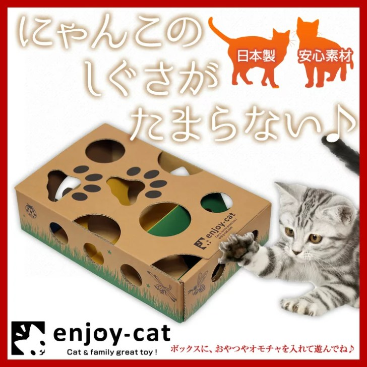 猫の認知症の治療と予防法~行動にも表れる症状と原因とは~