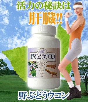 肝臓サプリメント【野ぶどうウコン 600粒】疲労、美容、飲み過ぎ 脂肪肝 役立つ 肝臓薬草 野ぶどう