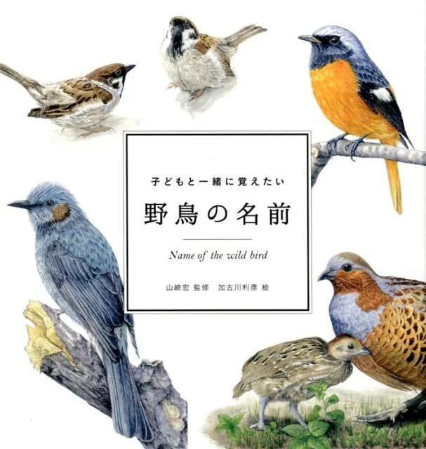子どもと一緒に覚えたい野鳥の名前 (momobook) [ 山崎宏(自然教育)