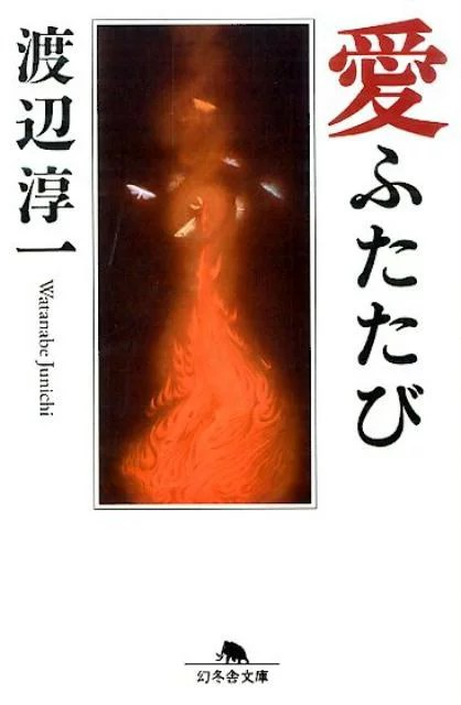 愛ふたたび (幻冬舎文庫) [ 渡辺淳一 ]