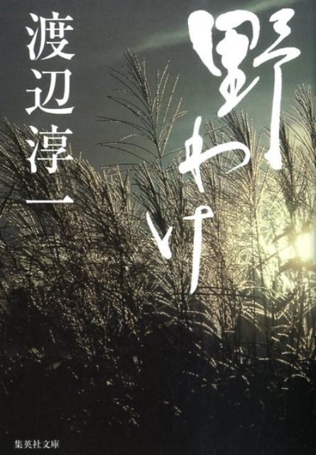野わけ (集英社文庫) [ 渡辺淳一 ]