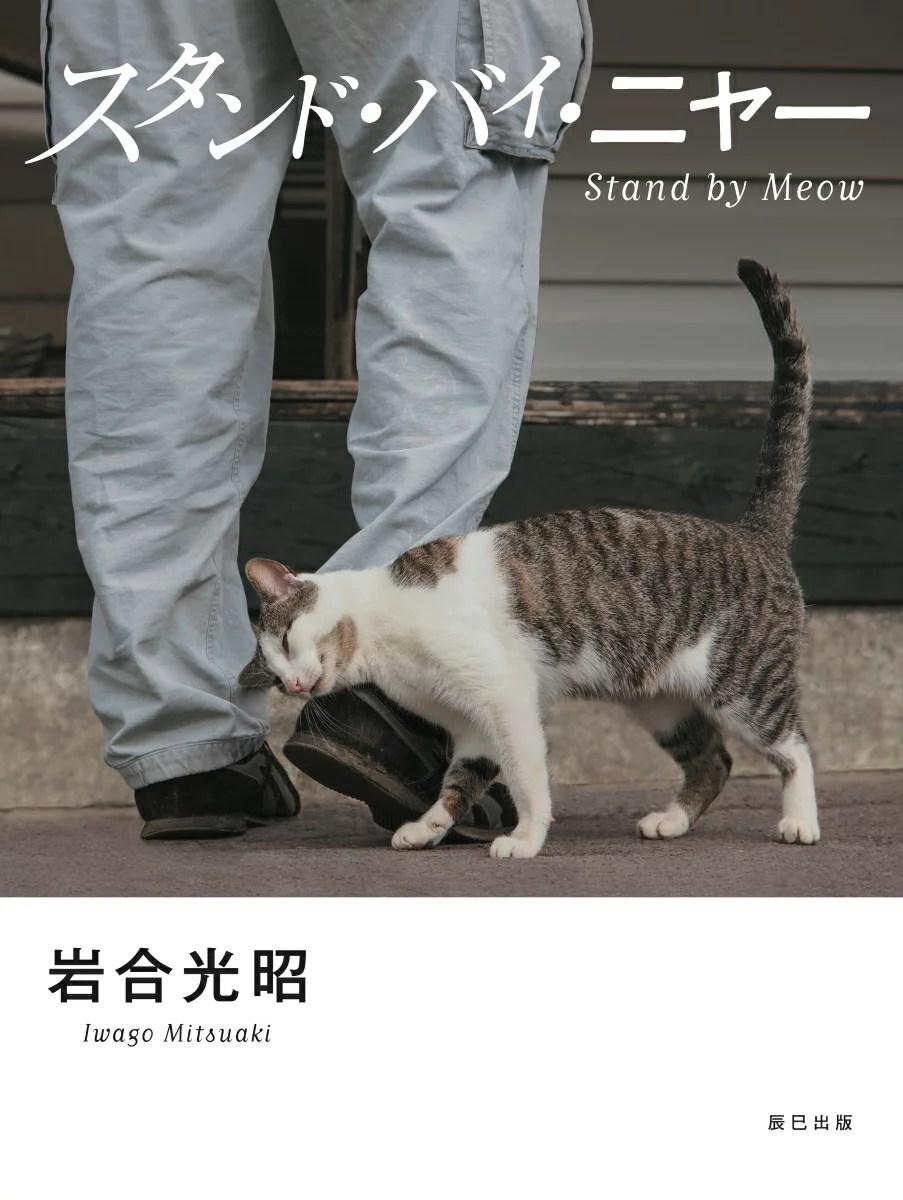 スタンド・バイ・ニャー 岩合光昭写真集 [ 岩合光昭 ]