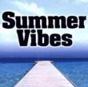 【中古】 Summer Vibes(CCCD) /(オムニバス),ザ・ウェイリング・ソウルズ,ジ・アリー・キャッツ,マイク&ザ・メカニックス,J.ガ..