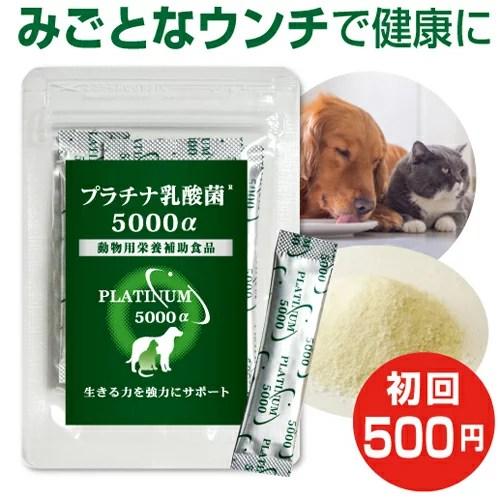 乳酸菌 ペット サプリ プラチナ乳酸菌5000α(初回お試し500円 ご家族様2コまで)動物用サプリ