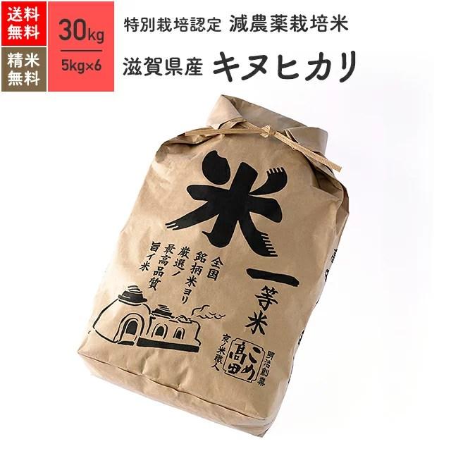 新米 特別栽培米 29年産 滋賀県産キヌヒカリ 米 30kg 送料無料米/玄米/白米/分つき米/5kg×6袋放射能検査実施済(下限値 0.5bq 検出なし)